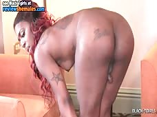 Black Tgirls Fan Favorite Innocence
