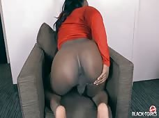 Big Booty Tgirl Stacey