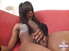 Ebony Shemale Emma